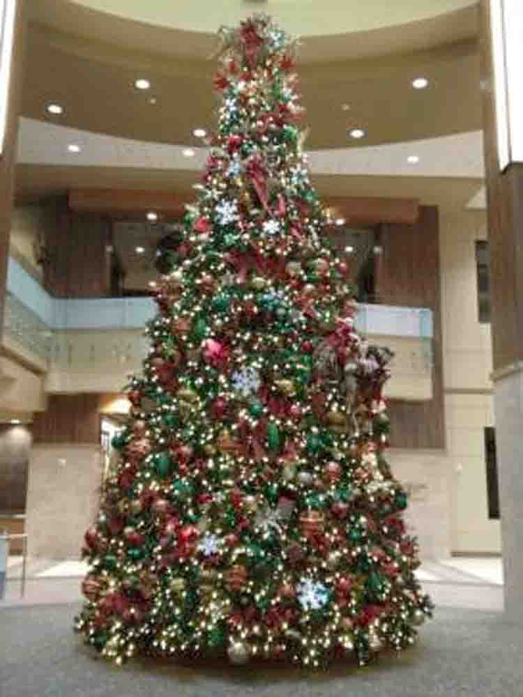 12 Foot to 18 Foot C7 LED Lites Commercial Trees Grand Teton