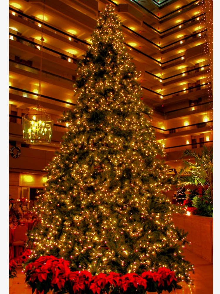 14 Foot Christmas Trees With C 7 Led Bulbs