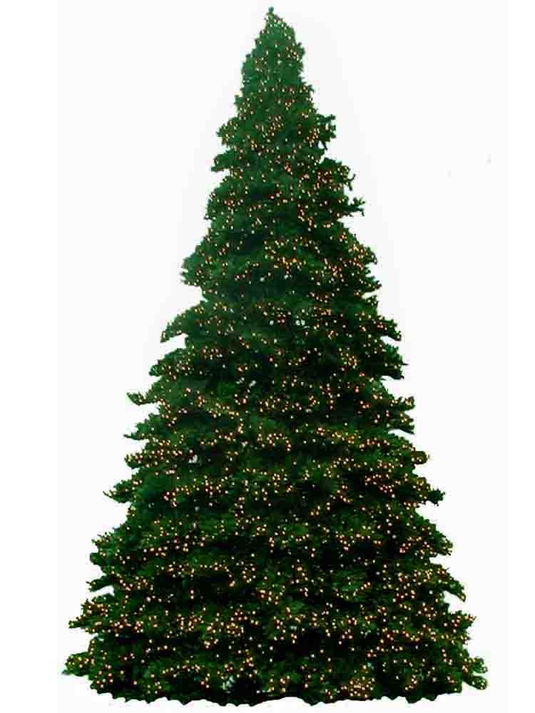 14 foot christmas trees prelit m5 led bulbs